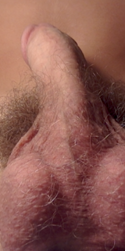 my big dick ;)